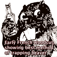 The preferred method of trapping beaver