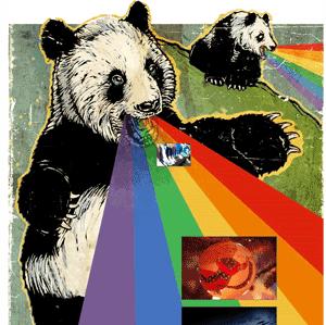 The Flickr Panda vomiting interesing pics and rainbows