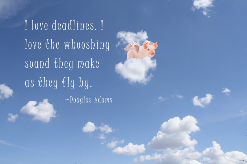 flying pig with quote