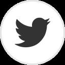 twitter logo -- little bird in circle