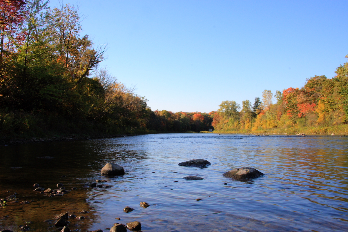 The Thames River, London, Ont.