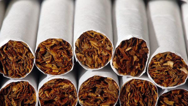 close up of the end of cigarettes
